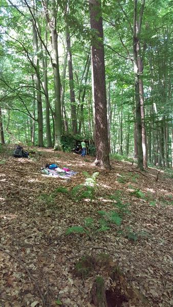 Naturcamp3-2015-005