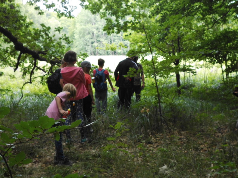 Naturcamp3-2015-010