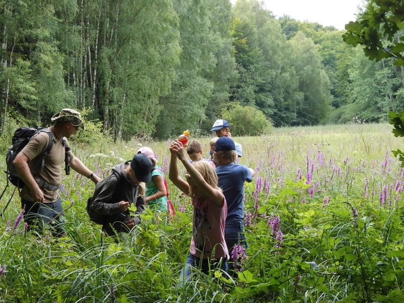 Naturcamp3-2015-016