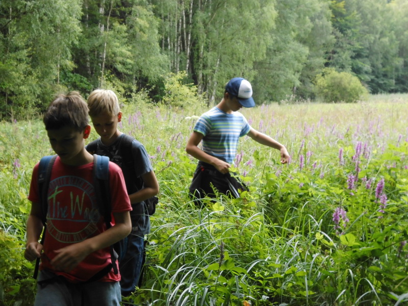 Naturcamp3-2015-017