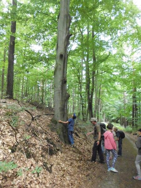 Naturcamp3-2015-020