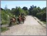 mirow-2008-weltenreise-15.jpg